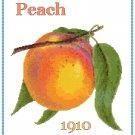 Country Peach Cross Stitch Pattern Chart Graph