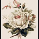 Beautiful White Roses Cross Stitch Pattern Chart Graph
