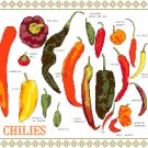 Chili Peppers Cross Stitch Pattern Chart Graph
