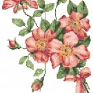 Tussie Mussie Wild Roses Cross Stitch Pattern Chart Graph