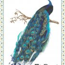 Royal Peacock Cross Stitch Pattern Chart Graph