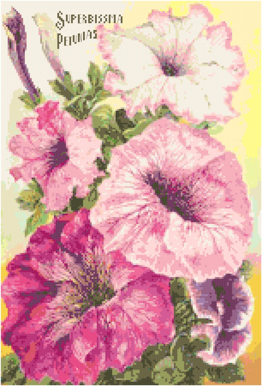 Vintage Garden Seed Catalog 1905 Magazine Cover Cross Stitch Pattern Chart Graph
