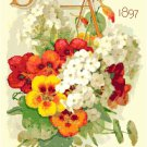 Antique Seed Catalog 1897 Magazine Cover Cross Stitch Pattern Chart Graph