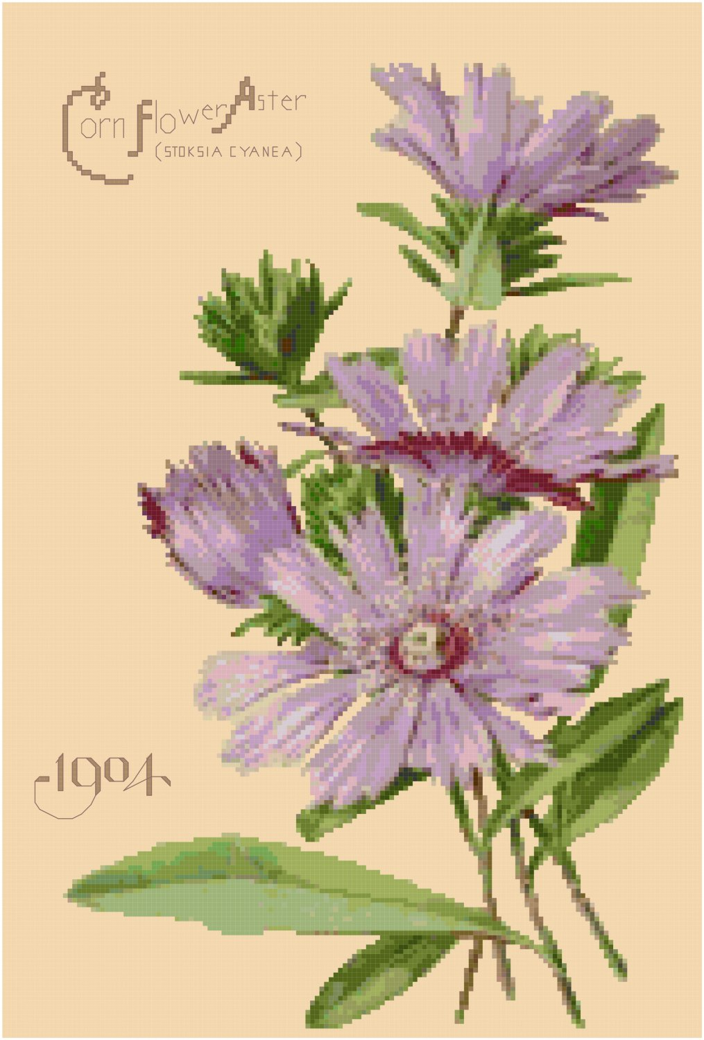 Vintage Seed Catalog Back Cover 1904 Cross Stitch Pattern Chart Graph