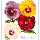 Pert Little Pansies Cross Stitch Pattern Chart Graph