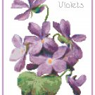 Wood Violets Cross Stitch Pattern Chart Graph