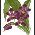 Blue Bollea Coelestis Orchid Cross Stitch Pattern Chart Graph
