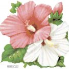 Hibiscus Blossoms Pattern Chart Graph