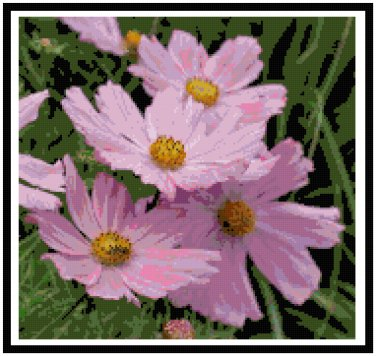 Pretty in Pink Cosmos Flowers Pattern Chart Graph
