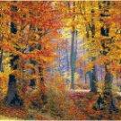 An Autumn Walk in the Woods Pattern Chart Graph