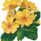 Pretty Primrose Pattern Chart Graph