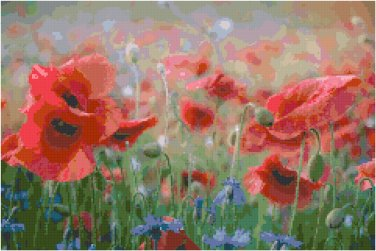 Poppy Field Contempo Pattern Chart Graph