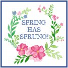 Spring Has Sprung! Pattern Chart Graph