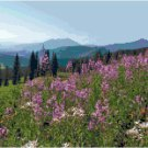Mountainside Wildflowers Pattern Chart Graph