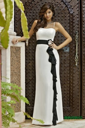 Long bridesmaid/ evening/ formal/ wedding guest dresses AD4064