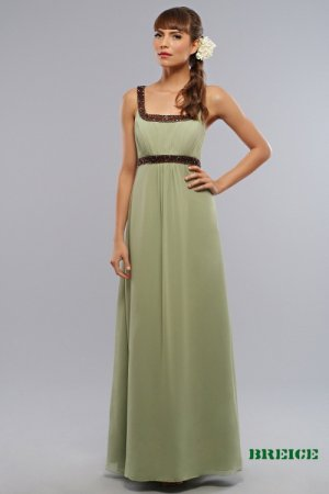 Bridesmaid/ formal/ wedding guest dresses AD238