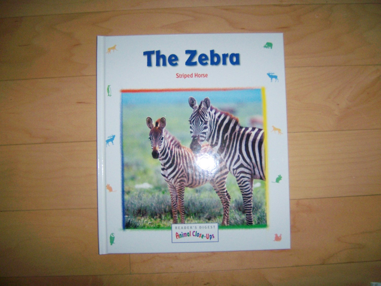 """The Zebra"" The Striped Horse  BNK546"