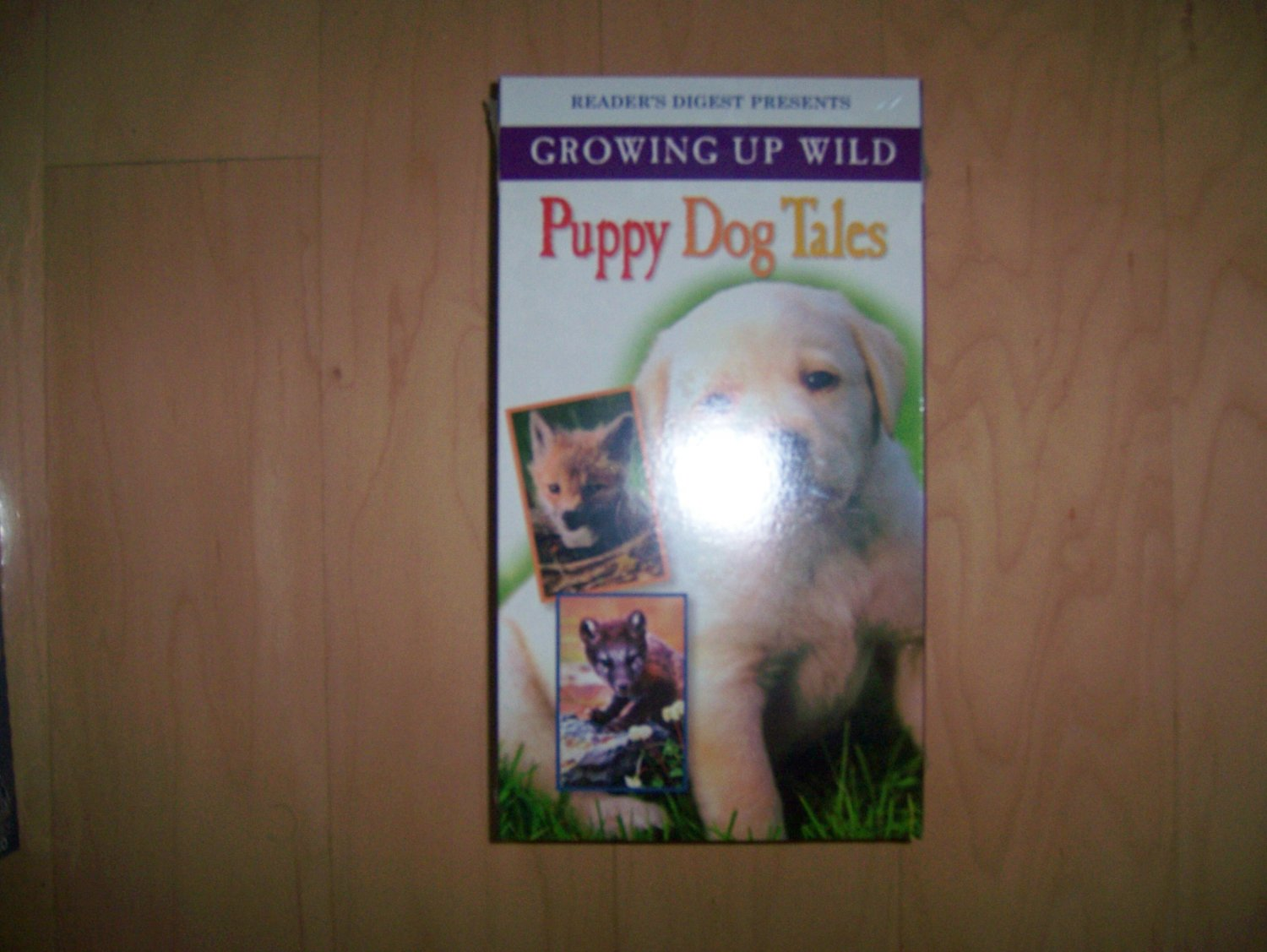VHS Puppy Dog Tales Growing Up Wild BNK777