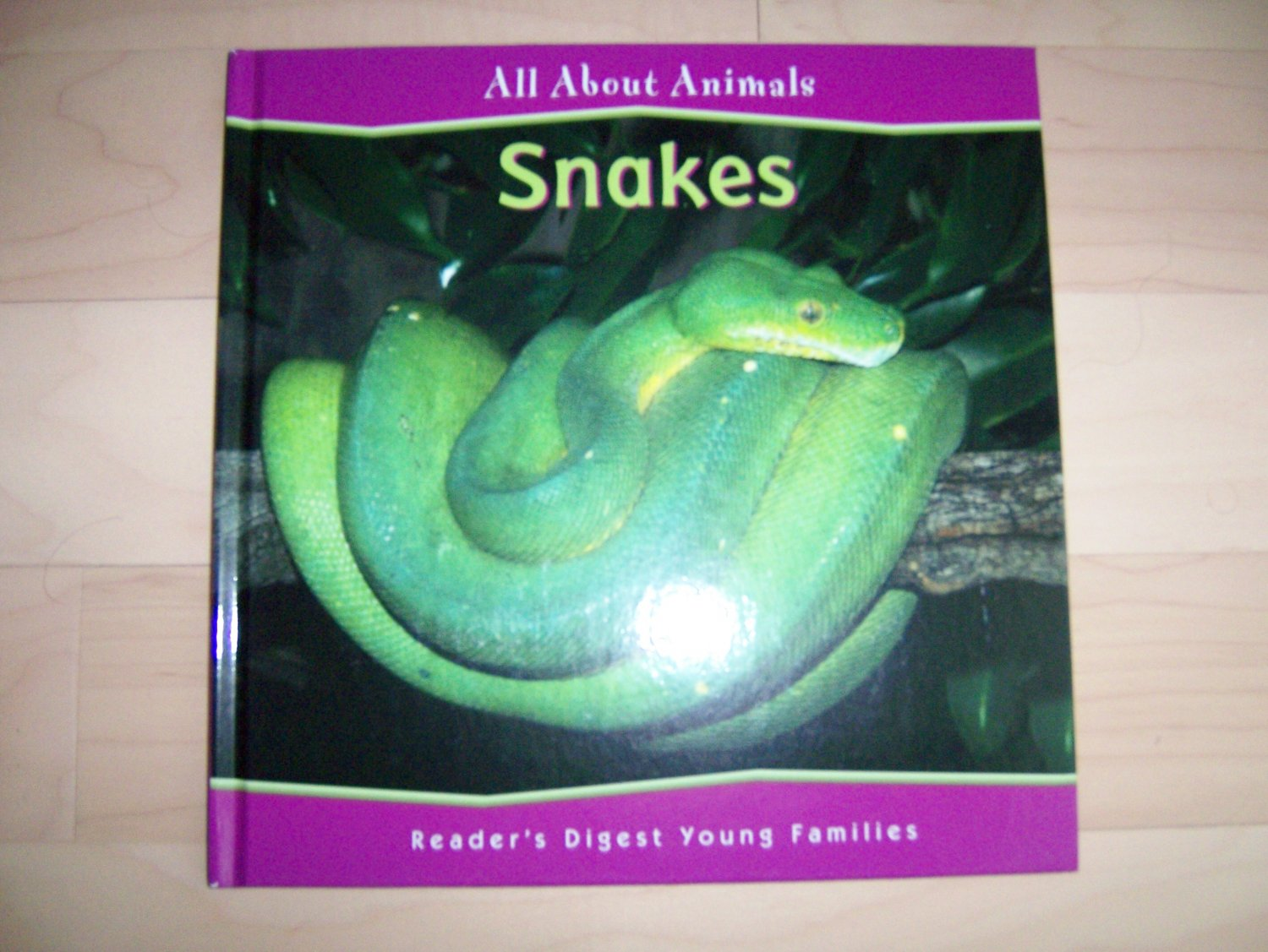 All About Animals Snakes BNK838
