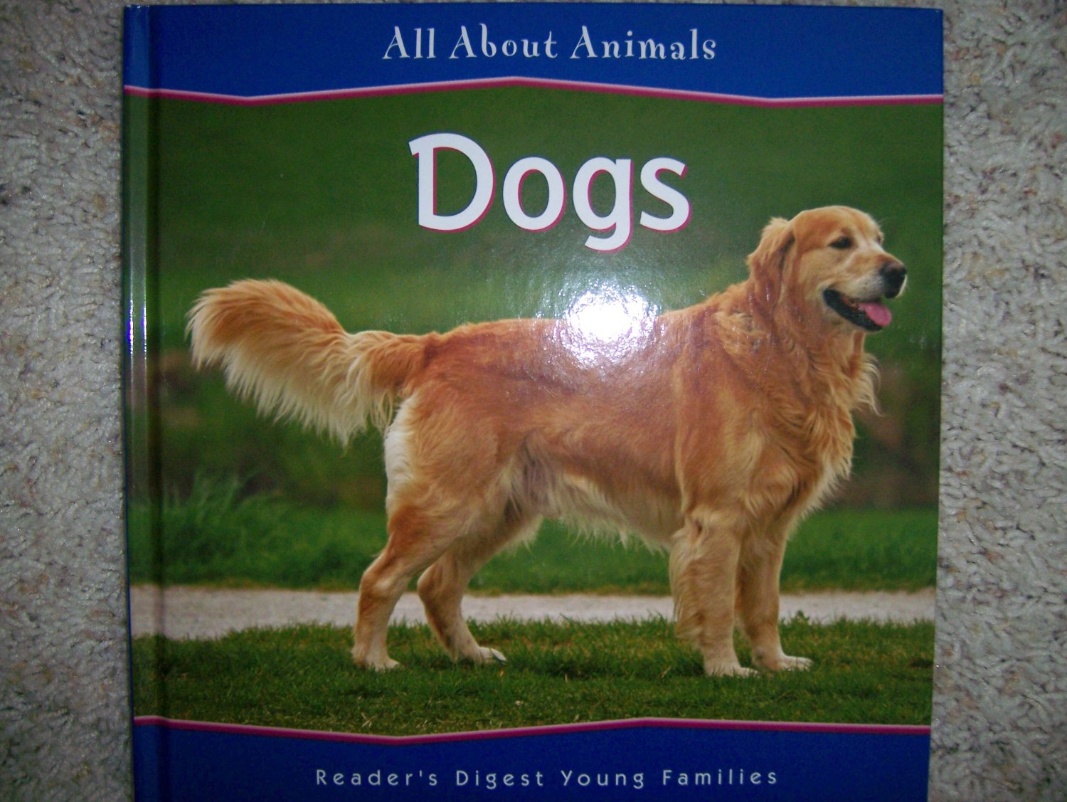 All About Animals  Dogs BNK857