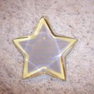 PaperWeight  Star Shaped  For Successful People  BNK994