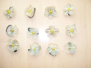 Set Of Twelve Daisy Napkin Holders  BNK1348