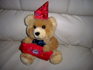 Brown Teddy Bear Very Cuddly  BNK1899