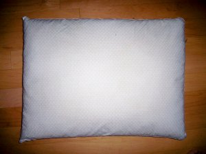 Regular Size Feather Pillow   BNK2548