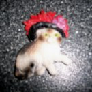 """Magnet 3""""x2"""" Brown/White Cat W Black And Red Hat  BNK2713"""