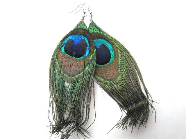 Peacock Feather Dangle Earrings