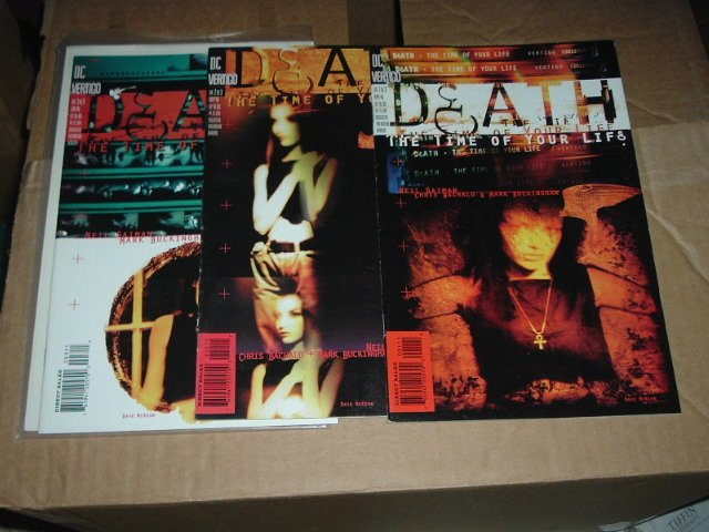 Death: The Time of Your Life #1 2 3 FULL SET (DC Vertigo Comics) COMPLETE SET
