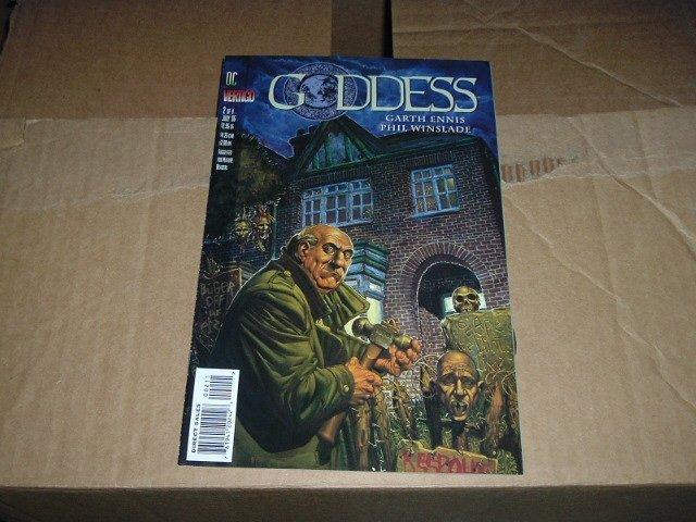 Goddess #2 (DC Vertigo Comics) by Garth Ennis and Phil Winslade