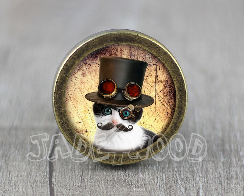 Cat Glass Cabochon Bronze cabinet Dresser Knobs pull / Dresser Pull