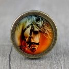 Horse Glass Cabochon Bronze cabinet Dresser Knobs pull / Dresser Pull
