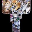 Key Blanks: Key Blank AC1 - Kittens - Kwikset