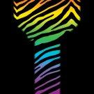 Key Blanks: Key Blank HK43 - Rainbow Zebra- Kwikset