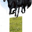 Key Blanks:Model HORSES Key Blanks - Kwikset