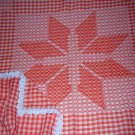 Tangerine white smocked gingham tablecloth star crochet embroidered hc1068