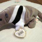 Ants the anteater Ty Beanie Baby  toy retired mint  hc2334