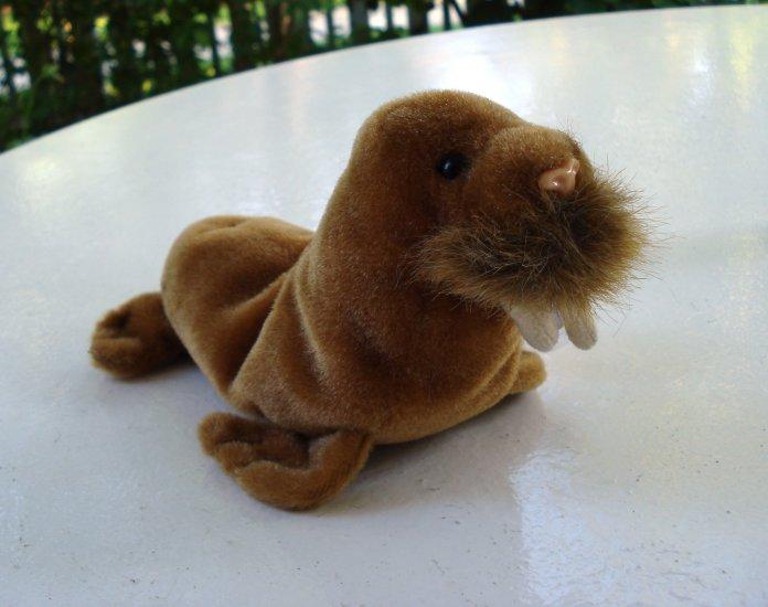 Paul the walrus Ty Beanie Baby toy retired mint hc2518