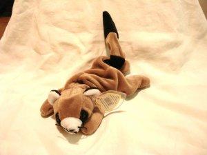 Ringo the raccoon Ty Beanie Baby toy 1995 retired mint hc2861
