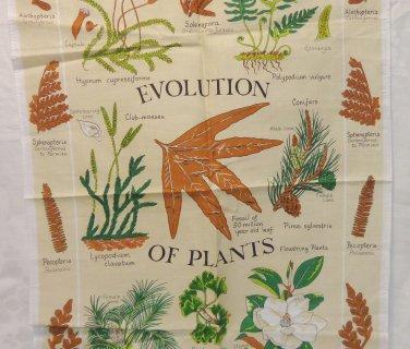 Evolution of Plants tea towel Royal Botanic Kew Gardens cotton unused hc3372