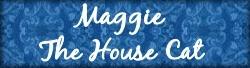 maggiethehousecat