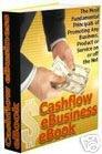 The Cash Flow eBuisness