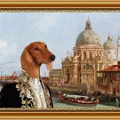 Saluki Fine Art Canvas Print -  Baron in Venice