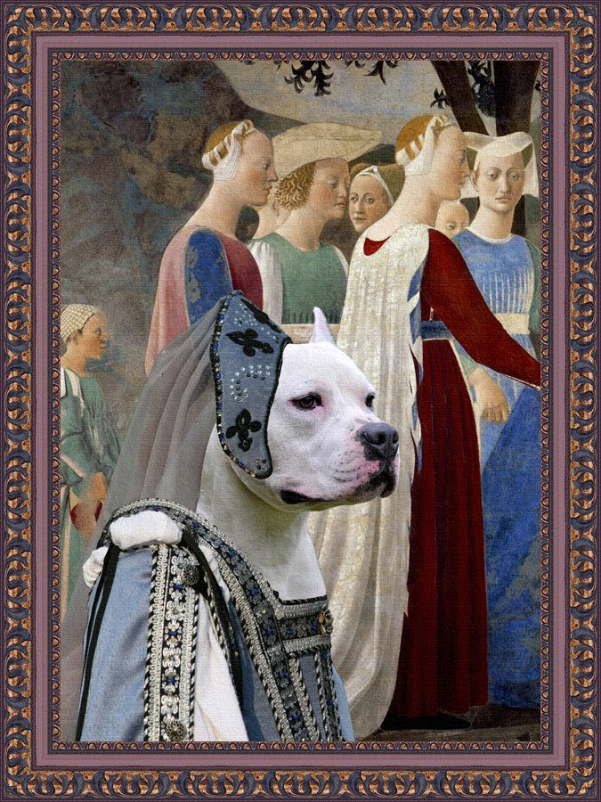 American Staffordshire Terrier Fine Art Canvas Print - Adoration