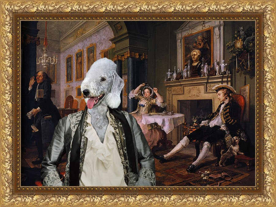 Bedlington Terrier Fine Art Canvas Print - Bid for marriage
