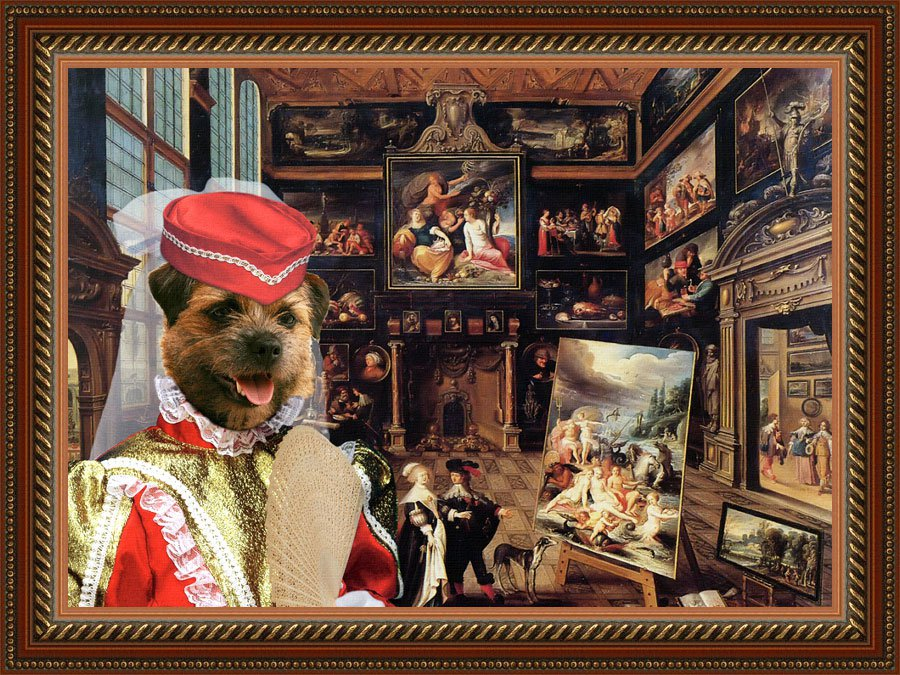 Border Terrier Fine Art Canvas Print - The Gallery customers