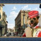 Border Terrier Fine Art Canvas Print - Piazza Santa Trinita Firenze