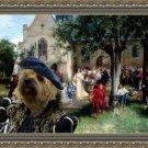Cairn Terrier Fine Art Canvas Print - Vigny The Baptism